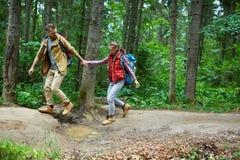Voyage dans la forêt Photo libre de droits