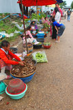 Voyage dans le Laotien Image stock
