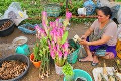 Voyage dans le Laotien Image libre de droits