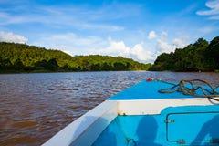 Voyage de bateau le long de la rivière de Kinabatangan au Bornéo, Malaisie photos stock