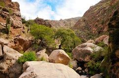 Voyage de Rio le Colorado de del de Cascadas Photo libre de droits