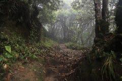 Voyage de Sandakphu Image libre de droits