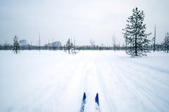 Voyage de ski en parc Image stock