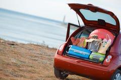 Voyage de voiture familiale Photo stock
