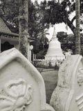 Voyage du Sri Lanka Asie de château de Budha Image libre de droits