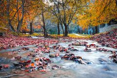 Voyage en Bulgarie photo libre de droits