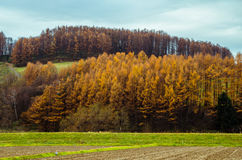Voyage par la route du Hokkaido Image stock