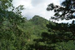 Voyage par les beaux coins de la nature Photo stock