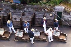 Voyage sledding incliné célèbre à Funchal, Madère Photos libres de droits