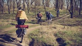 Voyage sur des vélos à la forêt Image stock