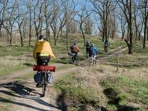 Voyage sur des vélos à la forêt Images stock
