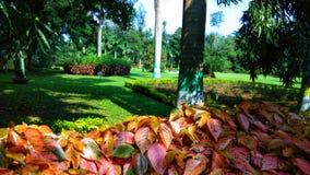 Voyage - vacances et visite saisonnière photographie stock