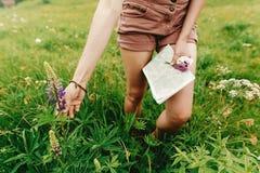 Voyageur élégant de femme de hippie tenant la carte et le wildflowe disponibles Photographie stock libre de droits
