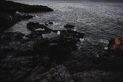 Voyageur anonyme sur les roches foncées image stock