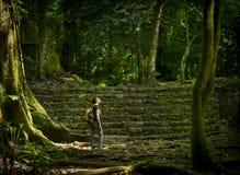 Voyageur féminin solo dans la forêt Photographie stock