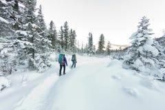 Voyageur heureux de deux femmes avec des sacs à dos marchant dans la forêt d'hiver Image stock