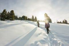 Voyageur heureux de deux femmes avec des sacs à dos marchant dans la forêt de montagnes d'hiver photo libre de droits