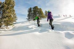 Voyageur heureux de deux femmes avec des sacs à dos marchant dans la forêt de montagnes d'hiver Photos stock