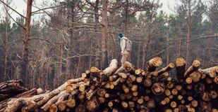 Voyageur marchant sur le tronc d'arbre abattu Image stock
