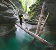 Voyageur regardant fixement le canyon Images libres de droits