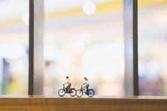 Voyageurs avec la bicyclette sur le pont en bois Photographie stock