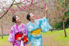 Voyageurs de femme utilisant le kimono traditionnel Image stock