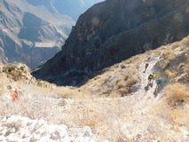 Voyageurs montant le canyon Photo libre de droits