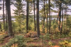 Free Voyageurs National Park In Northern Minnesota During Summer Stock Photo - 114508370