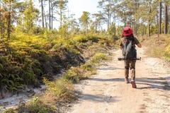 Voyageuse asiatique de femme avec le chapeau de participation de sac à dos aux montagnes et forêt tropicale, extérieur de phot images libres de droits