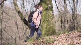 Voyageuse de fille avec des voyages d'un sac à dos dans la forêt banque de vidéos