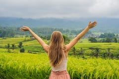 Voyageuse de jeune femme sur de belles terrasses de riz de Jatiluwih dans la perspective des volcans célèbres dans Bali, Indonési image libre de droits