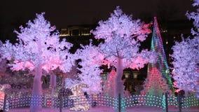 Voyagez au ` de Noël, forêt de musique, place de Moscou, Pushkin banque de vidéos