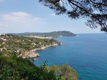 voyez et épine verte de ciel bleu de costabrava d'arbres de klif Photographie stock