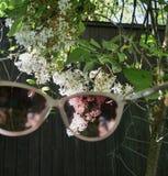 Voyez le monde par les verres roses images libres de droits