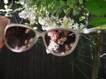Voyez le monde par les verres roses photographie stock