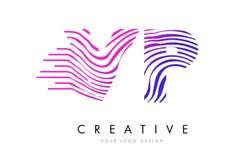 VP V P Zebra Lines Letter Logo Design avec des couleurs magenta Photos stock