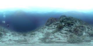 vr 360 μια κοραλλιογενής ύφαλος στις Φιλιππίνες, μαύρος βράχος φιλμ μικρού μήκους