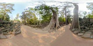 360VR av templet för Ta Prahm i Cambodja royaltyfria bilder