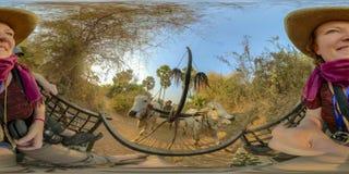 360VR av turister som rider oxcarts i lantliga Cambodja arkivfoton