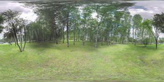 360 VR Green park by the road with car traffic in Moscow, Russia. 360 VR video. Green summer park with birches by the motorway with intense traffic on cloudy day stock video footage