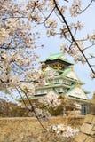 Vår i den Osaka slotten Arkivbild