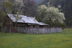 Vår i Patagonia Arkivfoto