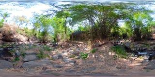 River in the jungle in asia vr360 stock image