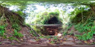 River in the jungle in asia vr360 stock photos