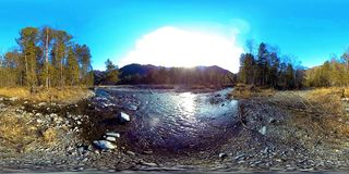 360 VR virtual reality of a wild mountains, pine forest and river flows. National park, meadow and sun rays. stock video footage