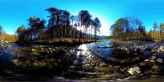 360 VR virtual reality of a wild mountains, pine forest and river flows. National park, meadow and sun rays.