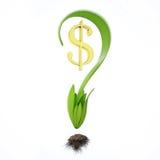 Vraagteken met dollar Royalty-vrije Stock Afbeelding