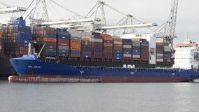 Vrachtschepen in haven stock footage