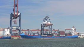 Vrachtschip in haven stock video