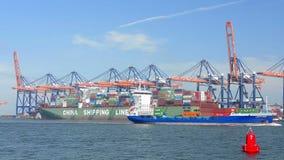 Vrachtschip in haven stock footage